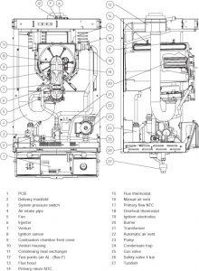 Alpha CD50S-1