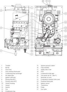 Alpha CD50S-2